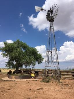 The North Windmill