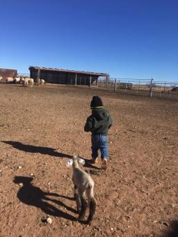 Death on the Family Farm
